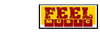 FeelMusic